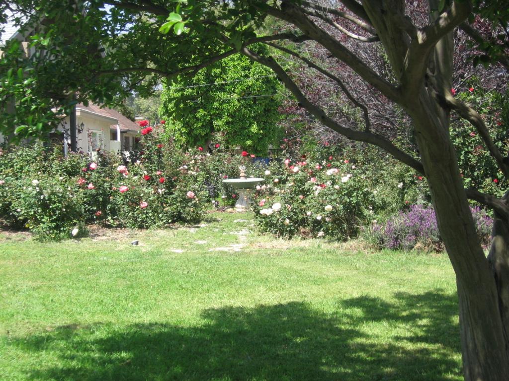 Awesome Backyard Apiary