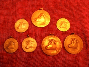 Some of the medals won by Fansher's Jersey cows